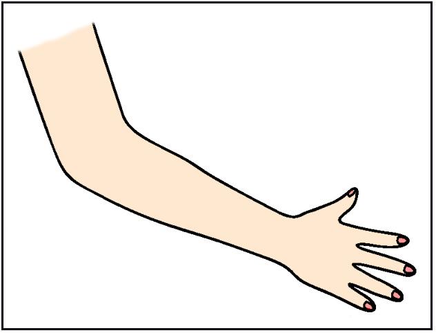 arm leg neck ne...